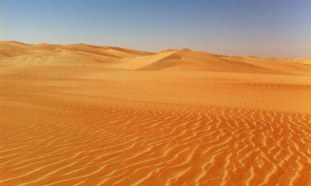 Expat in de Verenigde Arabische Emiraten