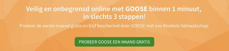 Nederlandse VPN Service