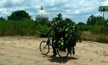 Klaar voor een nieuwe uitdaging – De Ivoorkust