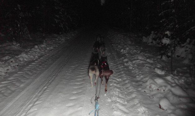 Emigratie via Estland naar Zweeds Lapland (Deel 11)