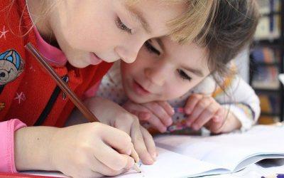 Nederlands Onderwijs Buitenland (NOB) heeft een aantal vragen